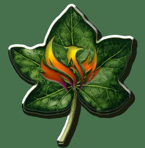 Phoenix Ivy Council